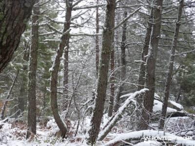Valle de Iruelas - Pozo de nieve - Cerro de la Encinilla;club senderista murcia navarra senderismo